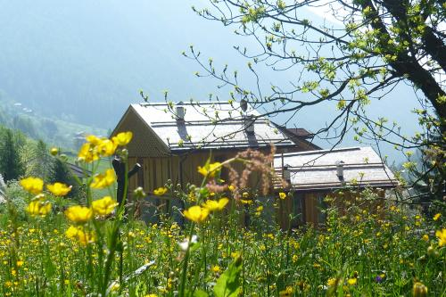 "Trentino's first hotel with ""rural accommodation"" status"